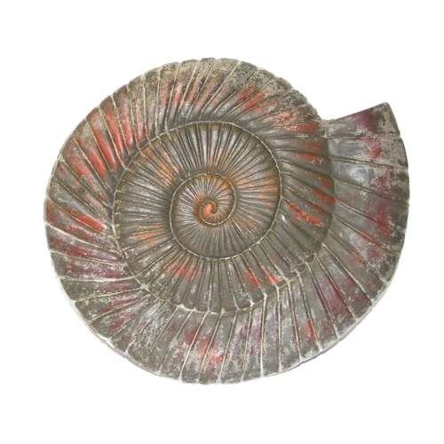 Betonform Schnecke Ammonit