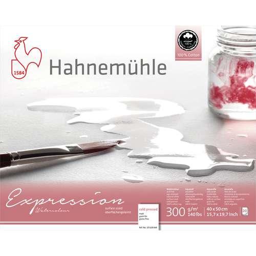 Hahnemühle Expression Watercolour Aquarellpapier
